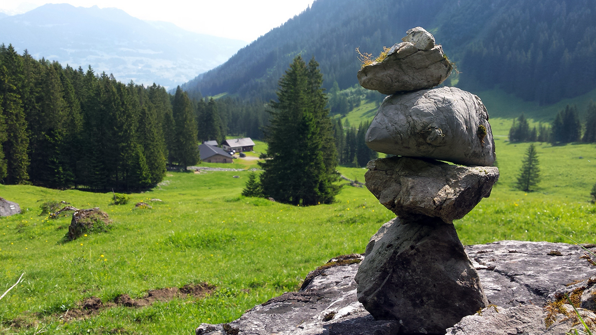 steine_natur
